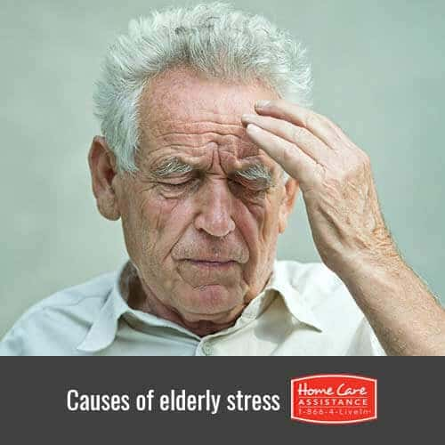 Common Causes of Senior Stress in Tucson, AZ