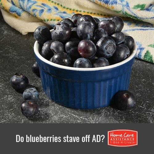 Do Blueberries Reduce Alzheimer's Risk in Tucson, AZ?